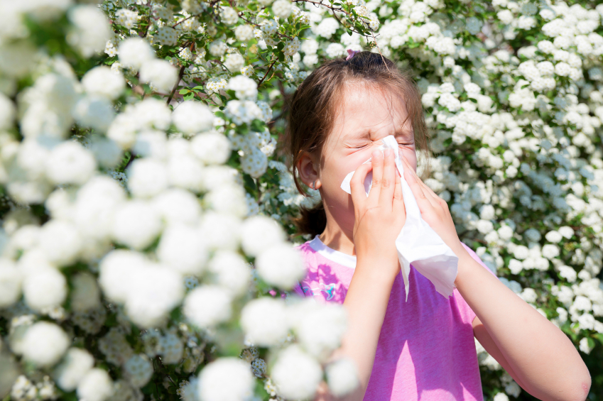 Allergies Aggravated by Low Body Temperature – Wilson's Syndrome